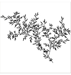 Tree branches with leaves vector