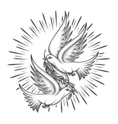 Two pigeons with olive branch tattoo vector