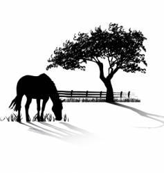 Horse grazing vector