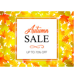autumn sale banner with autumn leaves background vector image