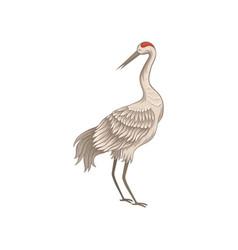 Beautiful crane with long thin beak legs and neck vector