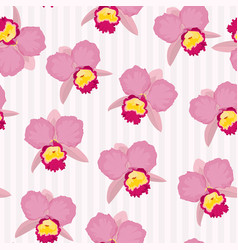 blooming cattleya orchid floral seamless pattern vector image