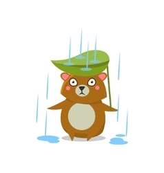 Brown Bear Under Rain vector