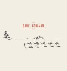 Caravan camels oasis desert drawn sketch vector
