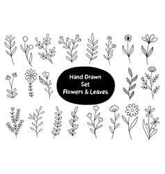 Hand drawn flowers doodle ornaments background vector
