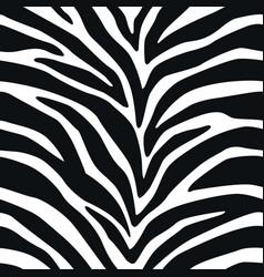 Seamless pattern zebra lines background animal vector