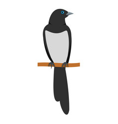 Sitting magpie icon flat style vector