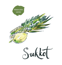 Watercolor lulav and etrog sukkot plants vector