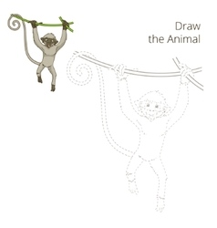 Draw animal monkey educational game vector
