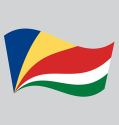 flag of seychelles waving on gray background vector image