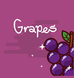 Grapes fruit delicious shiny poster vector