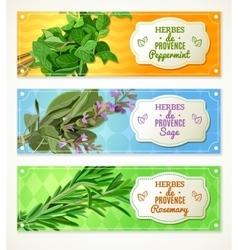Herbes de Provence banners vector