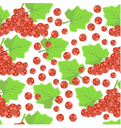 pattern with red currant vector image