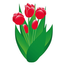 Red Tulips Isolated Object vector