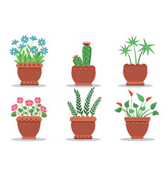 room plants in pots collection vector image