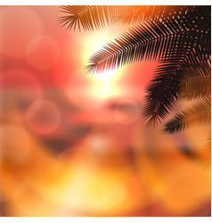 sea summer red sunset with palmtree leaves vector image