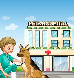 Vet and dog at the animal hospital vector