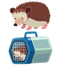 cute hedgehog in the cage vector image