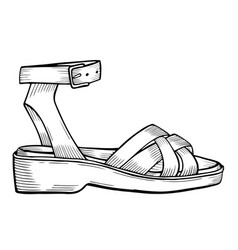 Shoes on white vector