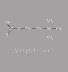Acetylcholine is an organic chemical vector