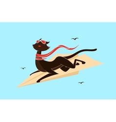Cat on a plane vector image