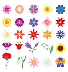 color flowers set vector image