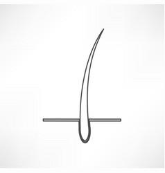 Hair follicle treatment design vector