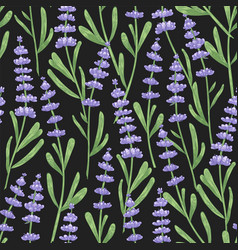 natural seamless pattern with lavender flowers vector image