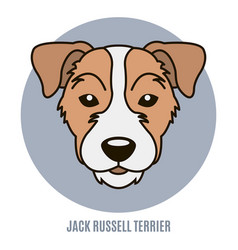 portrait of jack russell terrier vector image