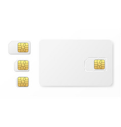 realistic sim cards set vector image