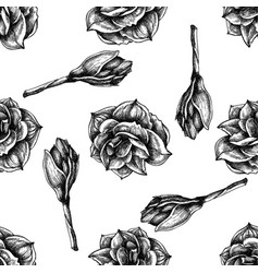 Seamless pattern with black and white amaryllis vector