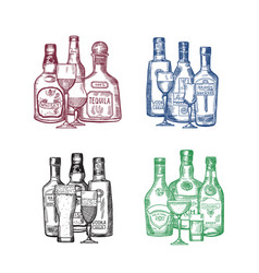set hand drawn alcohol drink bottles and vector image