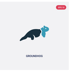 two color groundhog icon from animals concept vector image