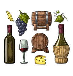 Wine set bottle glass barrel cheese bunch of vector
