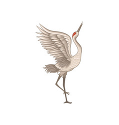 Elegant red-crowned crane standing on one leg with vector