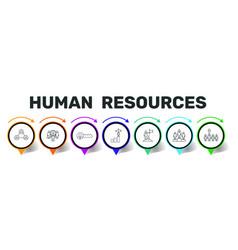 Human resources infographics design vector