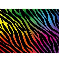 Rainbow zebra background vector image vector image