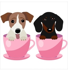 Jack Russell Terrier and Dachshund dog in pink vector