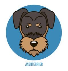 Portrait of jagdterrier vector