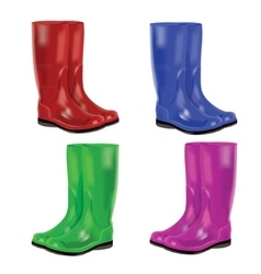Set of colorful rubber boots vector