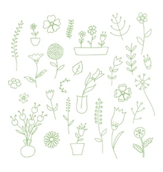 Set of spring plants and flowers hand-drawn vector image