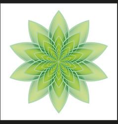lotus flower green vector image