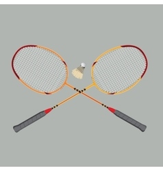 badminton rackets and shuttlecock vector image