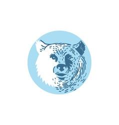 Bear Head Smiling Circle Drawing vector