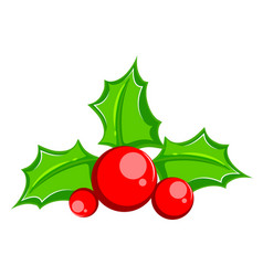 Common holly christmas tree leaf vector