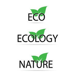 Eco sign with green leaf vector