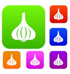 garlic set color collection vector image