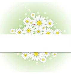 Greeting card with chamomiles and ladybug vector