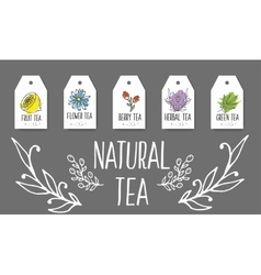 Herbal tea tags collection Organic herbs and wild vector