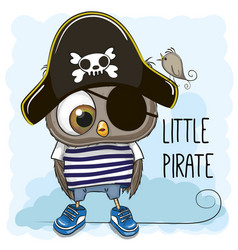 little owl pirate vector image